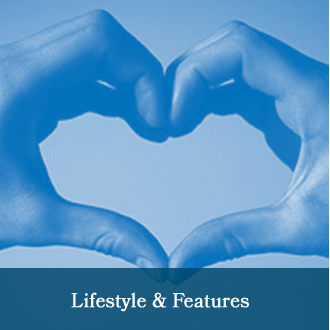 Lifestyle & Features Articles